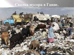 Свалка мусора в Ганне. Свалка мусора в Ганне.