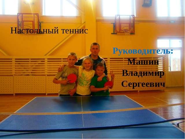 Настольный теннис Руководитель: Машин Владимир Сергеевич