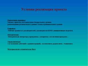 Условия реализации проекта Нормативно-правовые Законы, приказы, постановления