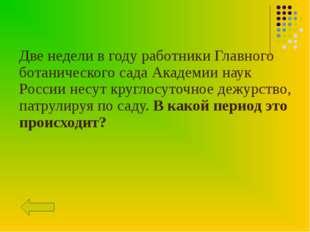 Две недели в году работники Главного ботанического сада Академии наук России