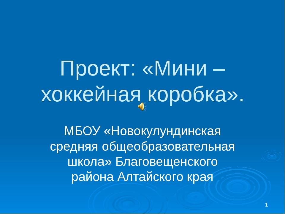 Проект: «Мини – хоккейная коробка». МБОУ «Новокулундинская средняя общеобразо...