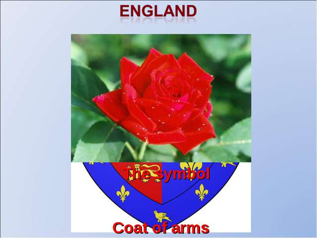 Coat of arms The flag The symbol