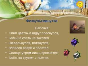 Физкультминутка Бабочка Спал цветок и вдруг проснулся, Больше спать не захот