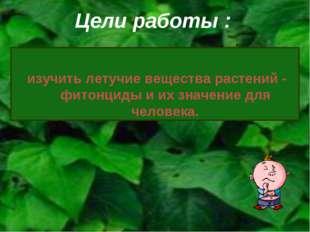 Цели работы : изучить летучие вещества растений - фитонциды и их значение для