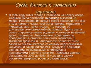 Среда, близкая к состоянию гармонии В 1997 году близ города Осташкова на бере