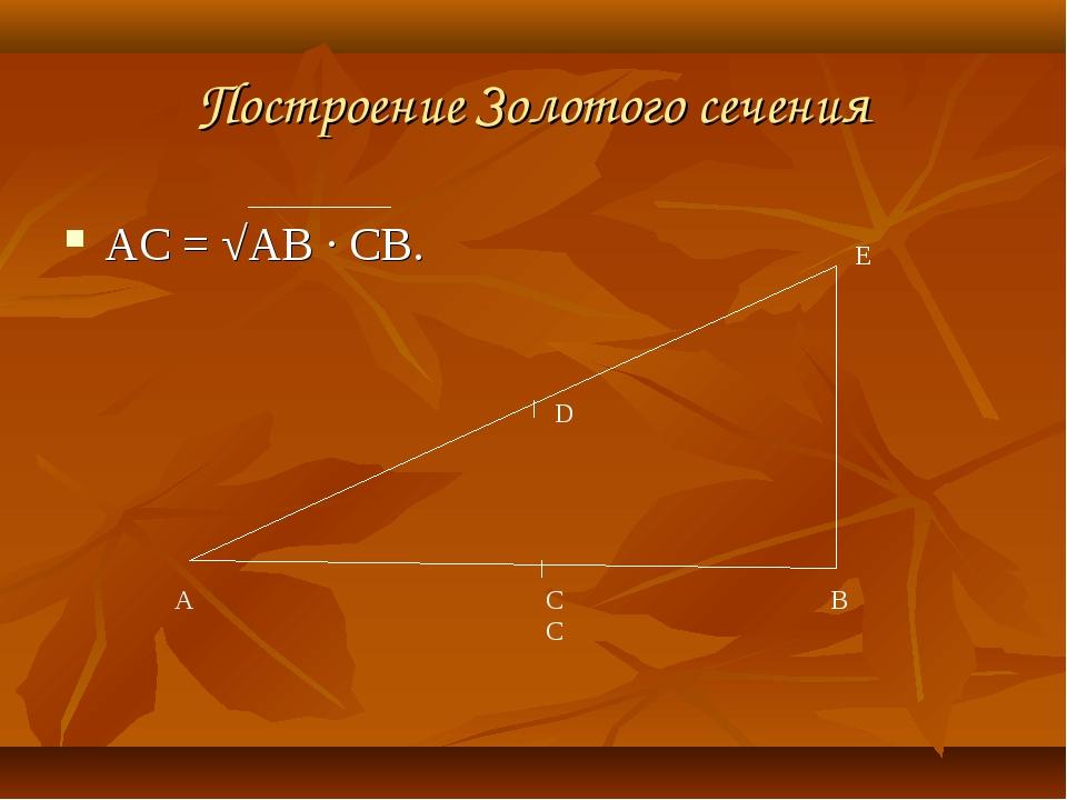 Построение Золотого сечения АС=√АВ ∙СВ. А В Е D СС