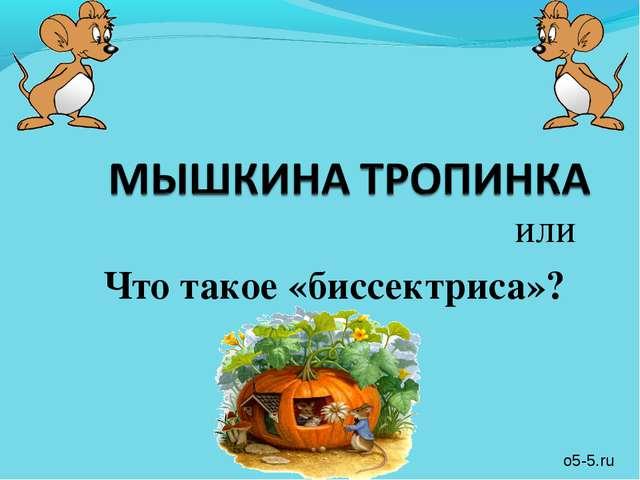 или Что такое «биссектриса»? o5-5.ru
