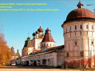 Борисоглебск. Борисоглебский мужской монастырь, основан в конце XIV в. Стены