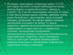Из видов, занесенных в Красную книгу СССР, регулярно весной и осенью наблюдае