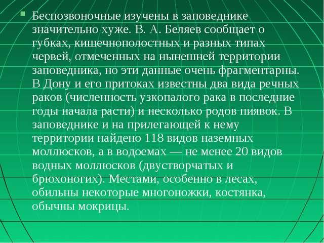 Беспозвоночные изучены в заповеднике значительно хуже. В. А. Беляев сообщает...
