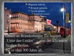 """Gleich an Brandenburger Tor beginnt """"Unter den Linden"""" - eine der schönsten S"""