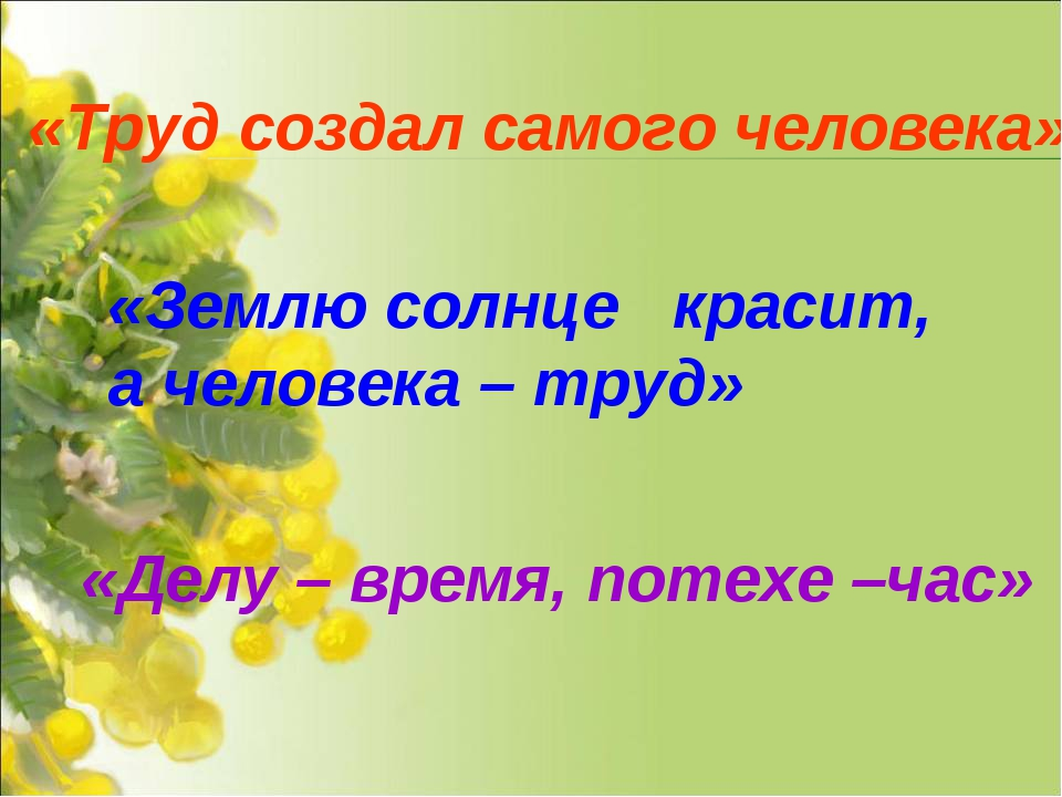 «Труд создал самого человека» «Землю солнце  красит, а человека – труд» «Дел...