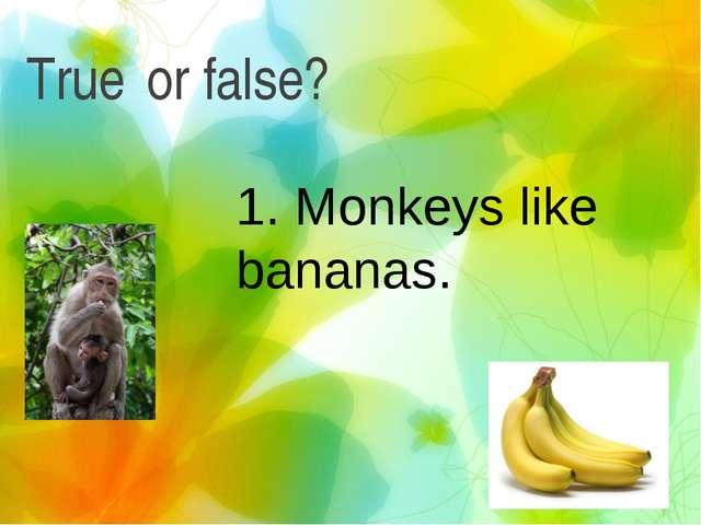 True or false? 1. Monkeys like bananas.