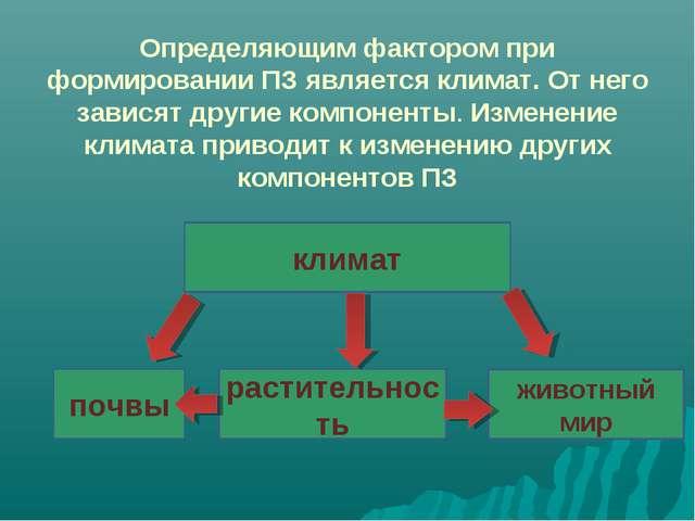 Определяющим фактором при формировании ПЗ является климат. От него зависят др...