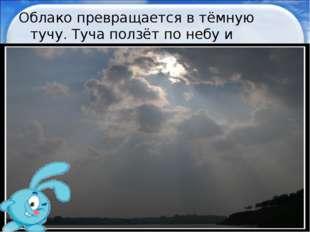 Облако превращается в тёмную тучу. Туча ползёт по небу и закрывает солнце. * *