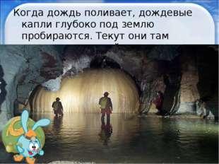 Когда дождь поливает, дождевые капли глубоко под землю пробираются. Текут они