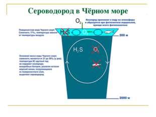 Сероводород в Чёрном море