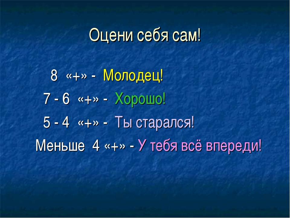 Оцени себя сам! 8 «+» - Молодец! 7 - 6 «+» - Хорошо! 5 - 4 «+» - Ты старался!...
