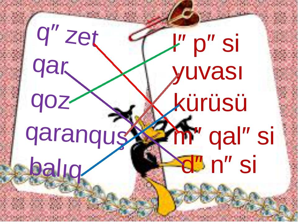 qəzet qar qoz qaranquş balıq ləpəsi yuvası kürüsü məqaləsi dənəsi