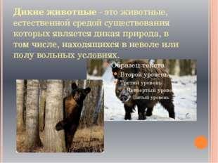 Дикие животные - это животные, естественной средой существования которых явля