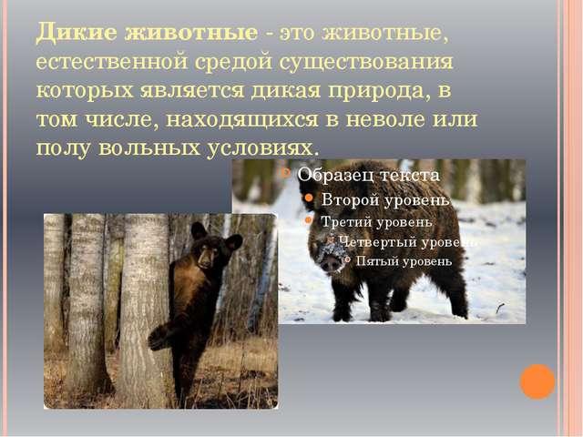 Дикие животные - это животные, естественной средой существования которых явля...