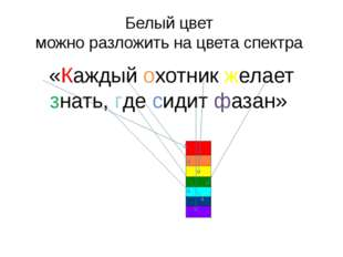 Белый цвет можно разложить на цвета спектра «Каждый охотник желает знать, где