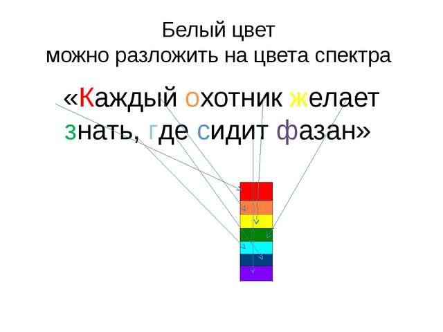 Белый цвет можно разложить на цвета спектра «Каждый охотник желает знать, где...