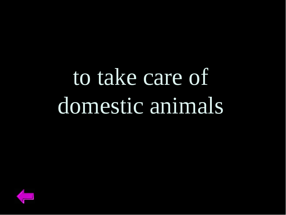 to take care of domestic animals