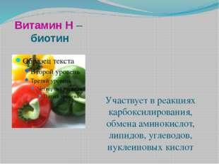 Витамин Н – биотин Участвует в реакциях карбоксилирования, обмена аминокислот