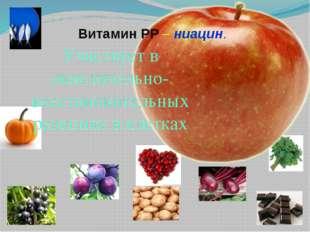 Витамин РР – ниацин. Участвует в окислительно-восстановительных реакциях в кл