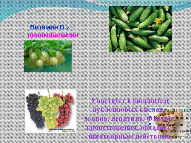 Витамин В12 – цианкобаламин Участвует в биосинтезе нуклеиновых кислот, холина...