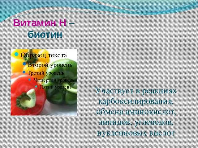 Витамин Н – биотин Участвует в реакциях карбоксилирования, обмена аминокислот...