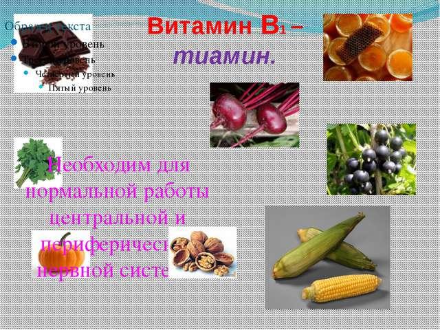Витамин В1 – тиамин. Необходим для нормальной работы центральной и перифериче...