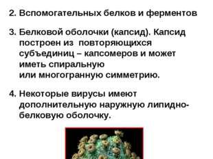 Все вирусы имеют принципиально сходное строение - они состоят из: Нуклеиновой