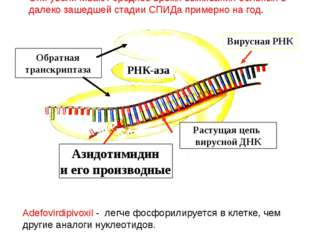 Возможный путь борьбы с вирусом с помощью азидотимидина (AZT) и его производн