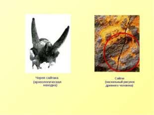 Череп сайгака (археологическая находка) Сайгак (наскальный рисунок древнего ч