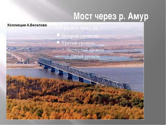Мост через р. Амур