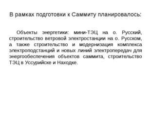Объекты энергетики: мини-ТЭЦ на о. Русский, строительство ветровой электрост