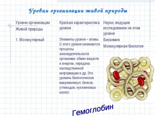 Уровни организации живой природы