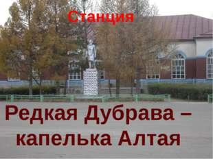 Станция Редкая Дубрава – капелька Алтая