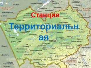Территориальная Станция