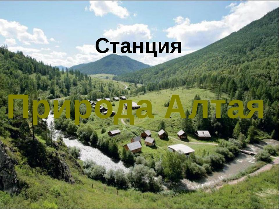Станция Природа Алтая