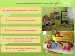 облегчение личностного взаимодействия педагога с детьми Принципы организации