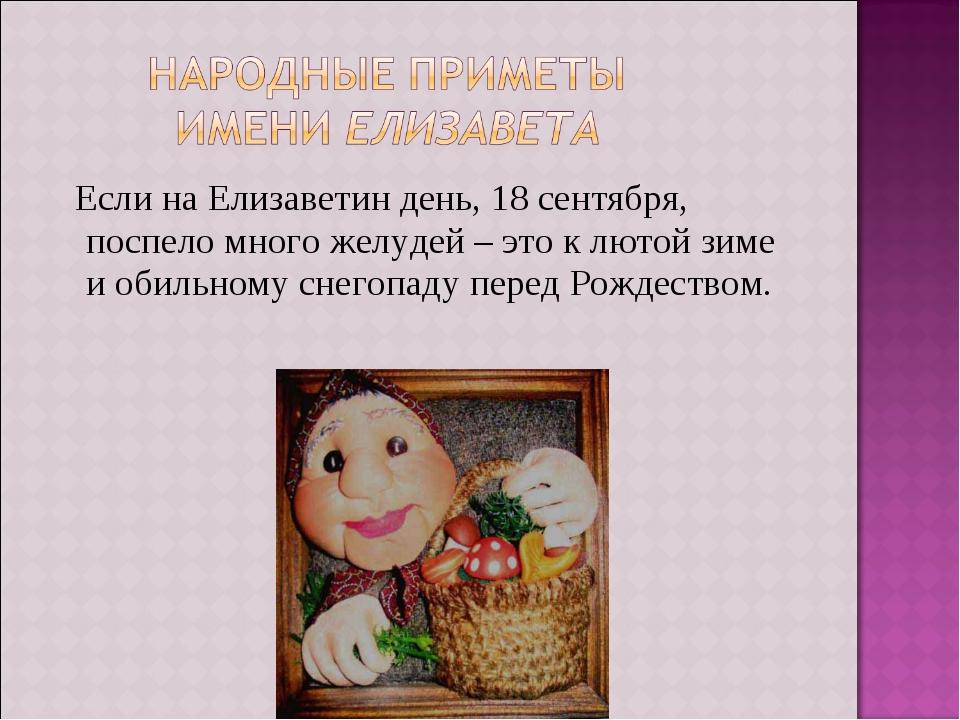 Если на Елизаветин день, 18 сентября, поспело много желудей – это к лютой зи...