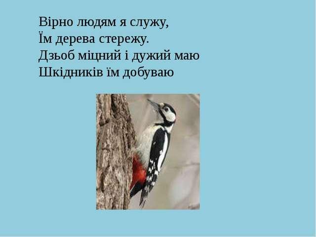 Вірно людям я служу, Їм дерева стережу. Дзьоб міцний і дужий маю Шкідників їм...