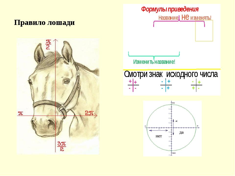 Правило лошади