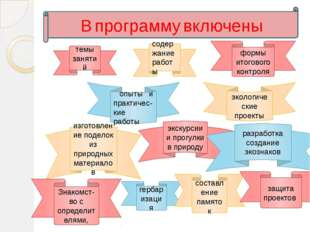 В программу включены темы занятий содержание работы формы итогового контроля