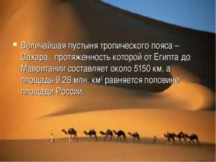 Величайшая пустыня тропического пояса – Сахара, протяженность которой от Егип
