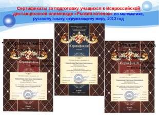 Сертификаты за подготовку учащихся к Всероссийской дистанционной олимпиаде «Р