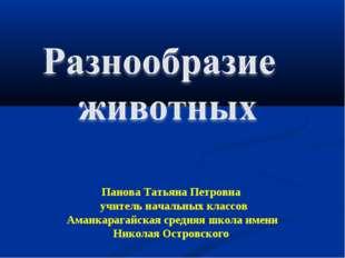 Панова Татьяна Петровна учитель начальных классов Аманкарагайская средняя шк